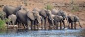 Mpumalanga and Kruger National Park Safari Travel
